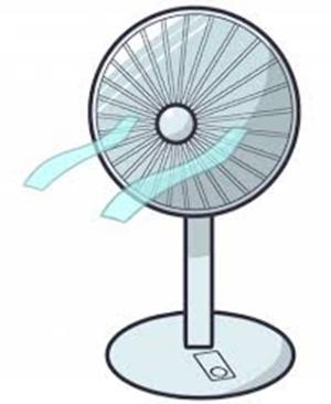 夏 扇風機